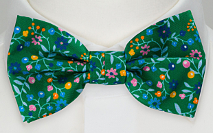 EVOCAREZZA Green bow tie
