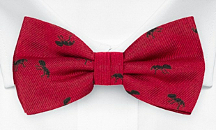 ANTBARON Red bow tie