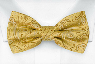 BRIDALLY Golden yellow bow tie