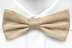 BRUDGUM CHAMPAGNE pre-tied bow tie