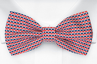 DECLINO Red bow tie