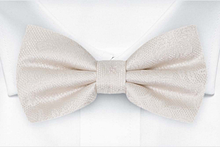 EVERAFTER Ivory bow tie