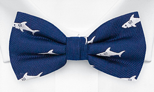 FINFANG Blue bow tie