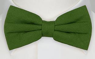 BASKETVEIL Green bow tie