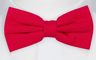 BASKETVEIL Red bow tie