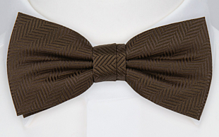 DRUMMEL BROWN bow tie