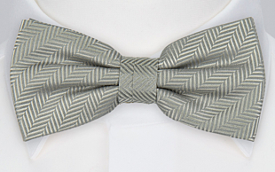DRUMMEL Light grey bow tie