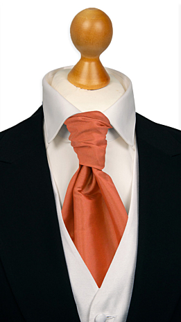 SOLID Dark peach cravat