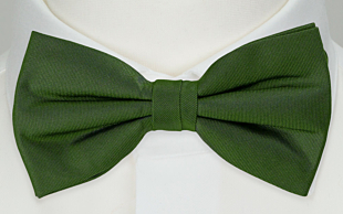 SOLID Green bow tie