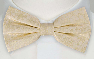 VIGSEL CHAMPAGNE pre-tied bow tie