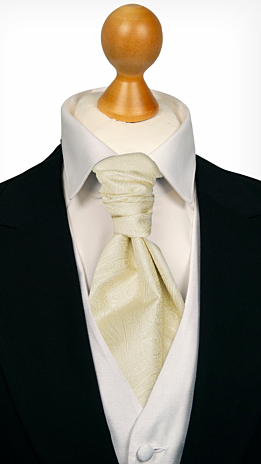 ORNATE Champagne cravat