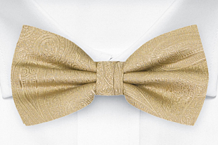 ORNATE Gold bow tie