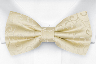SNAZZY Champagne bow tie