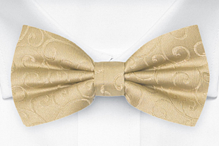 SNAZZY Gold bow tie