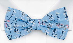 TWIGGLY Light blue bow tie