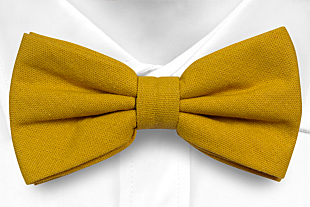 WISTFUL Honey bow tie