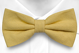WISTFUL Light yellow bow tie