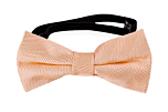 JAGGED Apricot baby bow tie