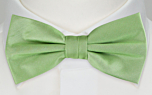 SOLID Light green pre-tied bow tie