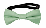 SOLID Pastel green baby bow tie