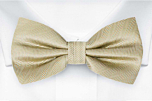 JAGGED Sage green pre-tied bow tie