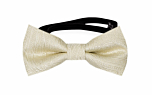 ORNATE Champagne baby bow tie