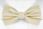 ORNATE Champagne boy's bow tie