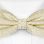 ORNATE Champagne pre-tied bow tie