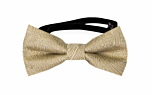 ORNATE Gold baby bow tie