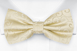 SNAZZY Champagne pre-tied bow tie