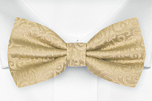 SWANKY Gold pre-tied bow tie